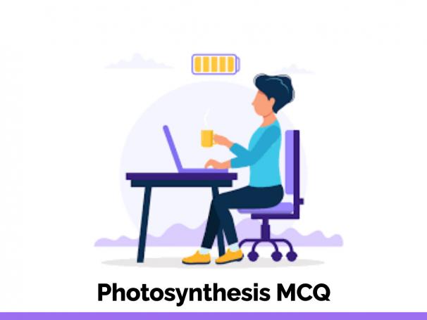 Photosynthesis MCQ