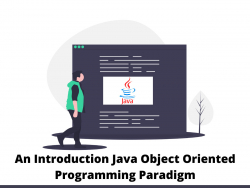 An Introduction Java Object Oriented Programming Paradigm