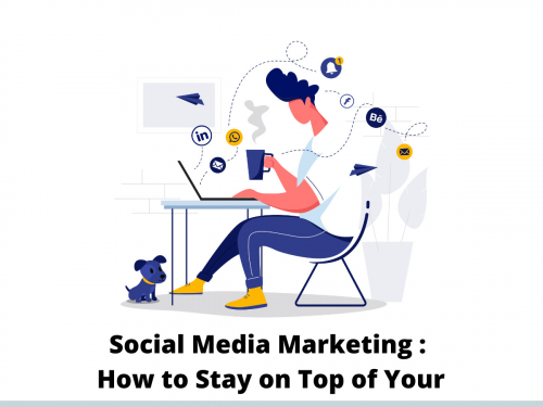 Social Media Marketing : How to Stay on Top of Your