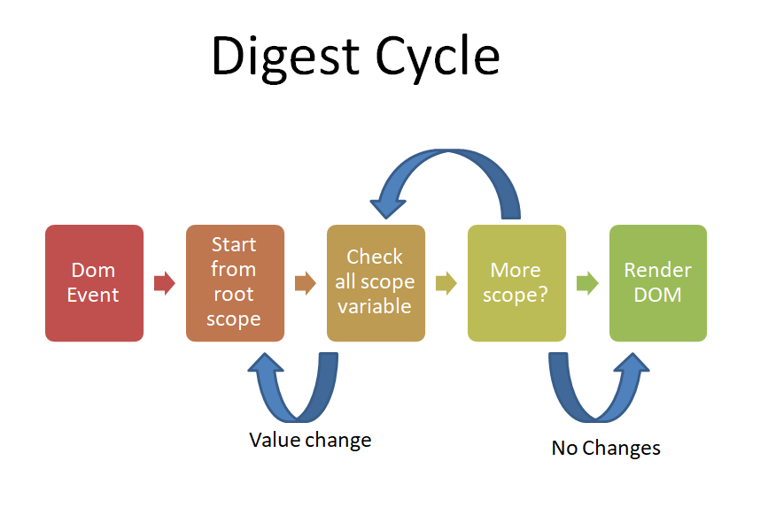 Angular Digest Cycle